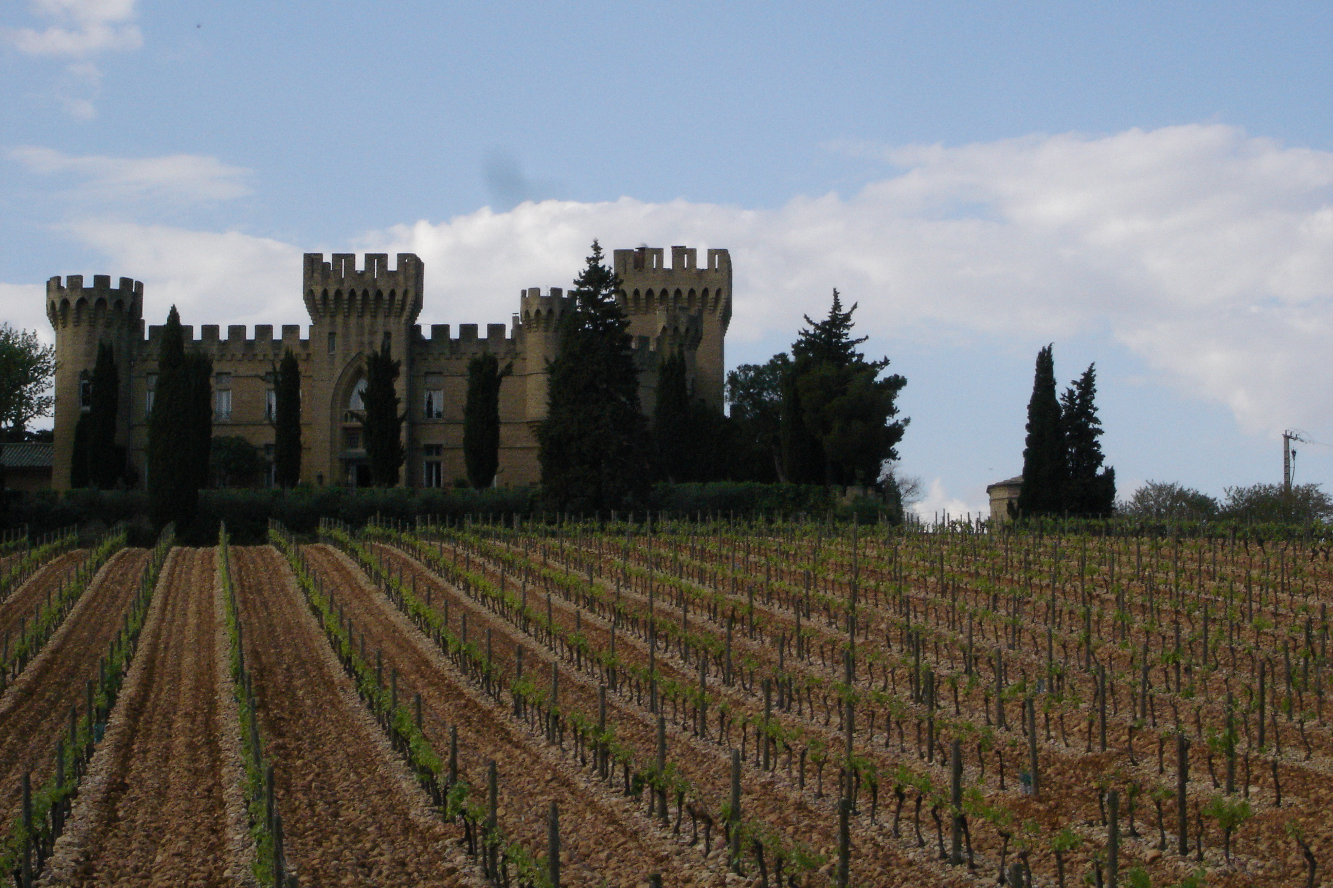 Chateauneuf_vineyard_%26_castle